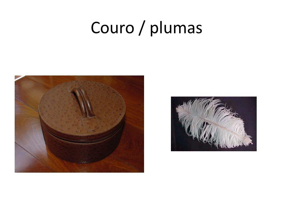 Couro / plumas