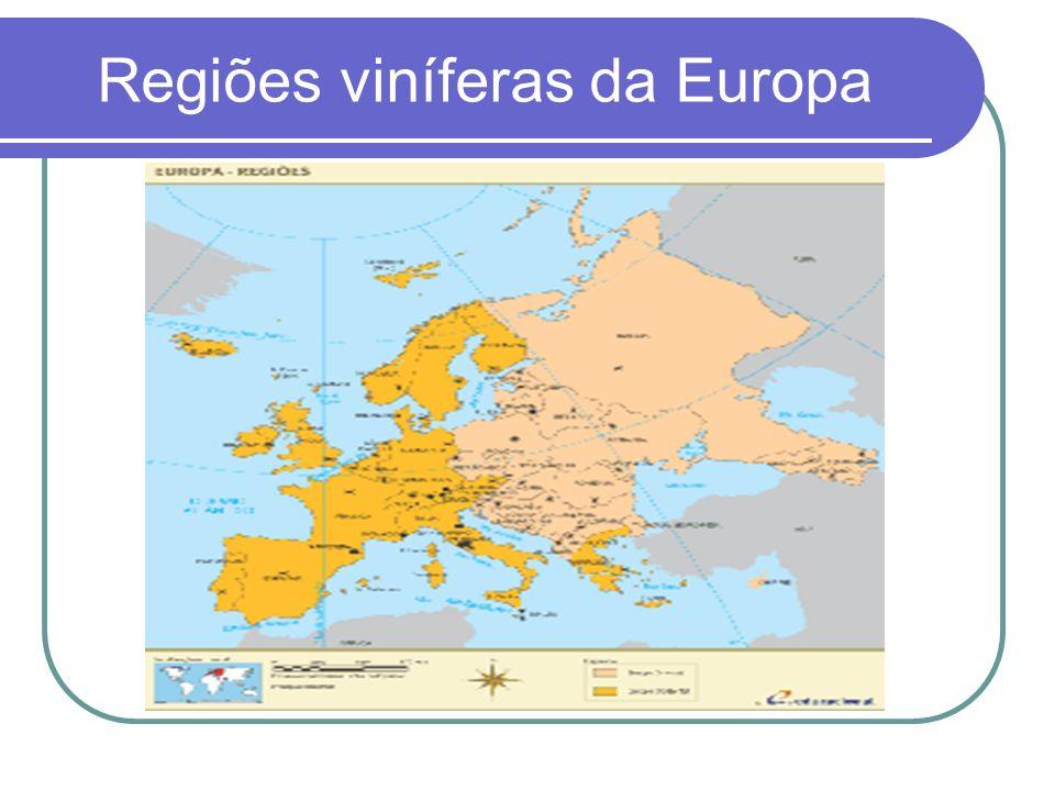Regiões viníferas da Europa