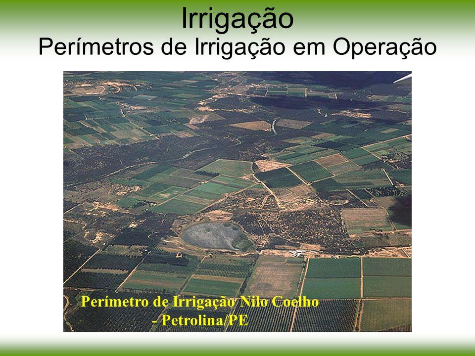 Irrigação Perímetros de Irrigação em Operação Perímetro de Irrigação Nilo Coelho - Petrolina/PE