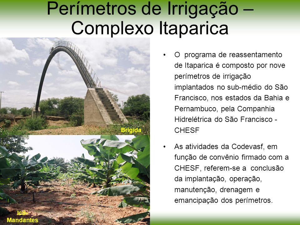 Perímetros de Irrigação – Complexo Itaparica O programa de reassentamento de Itaparica é composto por nove perímetros de irrigação implantados no sub-