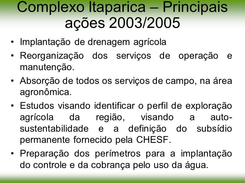 Complexo Itaparica – Principais ações 2003/2005 Implantação de drenagem agrícola Reorganização dos serviços de operação e manutenção. Absorção de todo
