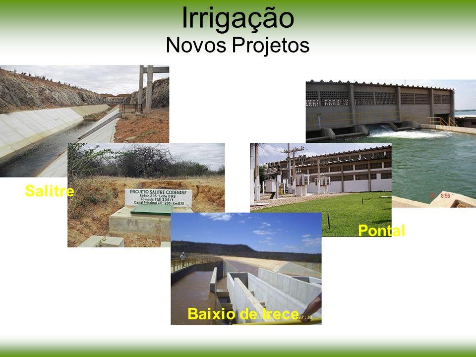 Irrigação Novos Projetos Salitre Pontal Baixio de Irece