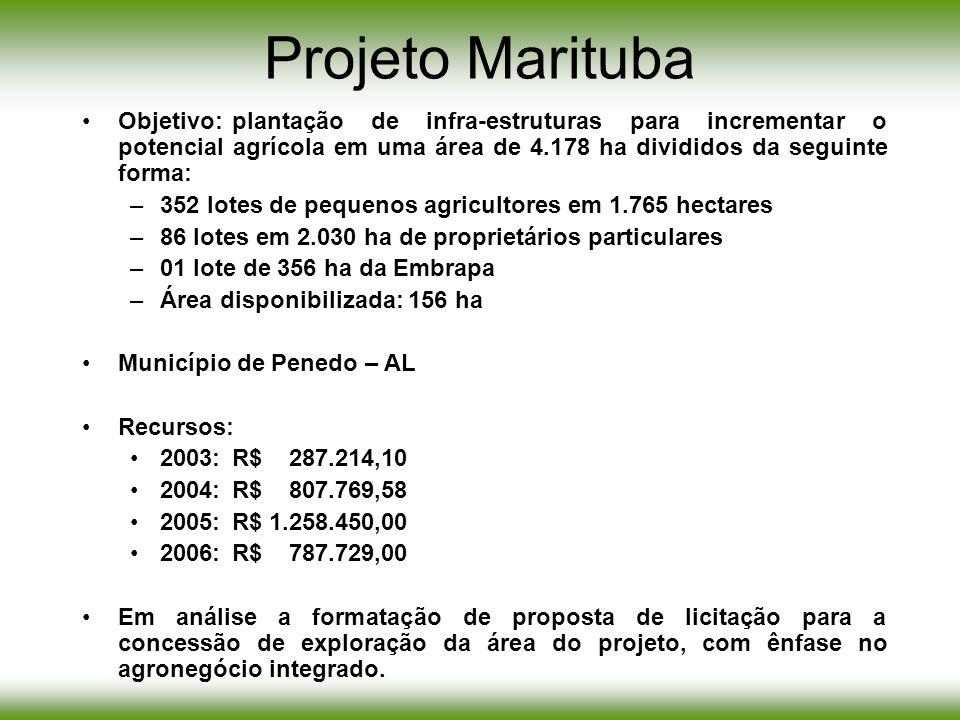 Projeto Marituba Objetivo:plantação de infra-estruturas para incrementar o potencial agrícola em uma área de 4.178 ha divididos da seguinte forma: –35