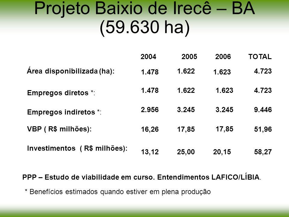 Projeto Baixio de Irecê – BA (59.630 ha) 1.478 20042005 1.478 2.956 16,26 13,12 1.622 TOTAL 4.723 3.2459.446 17,8551,96 25,0058,27 2006 20,15 1.623 1.