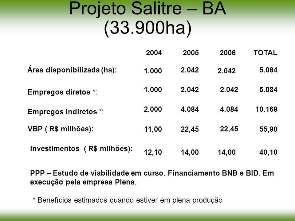 Projeto Salitre – BA (33.900ha) 1.000 20042005 1.000 2.000 11,00 12,10 2.042 TOTAL 5.084 4.08410.168 22,4555,90 14,0040,10 2006 14,00 2.042 4.084 22,4