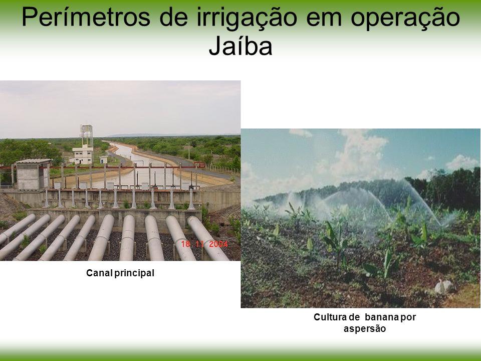 Perímetros de irrigação em operação Jaíba Cultura de banana por aspersão Canal principal