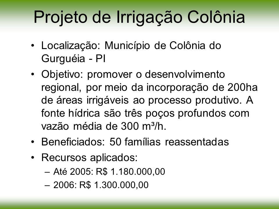 Projeto de Irrigação Colônia Localização: Município de Colônia do Gurguéia - PI Objetivo: promover o desenvolvimento regional, por meio da incorporaçã