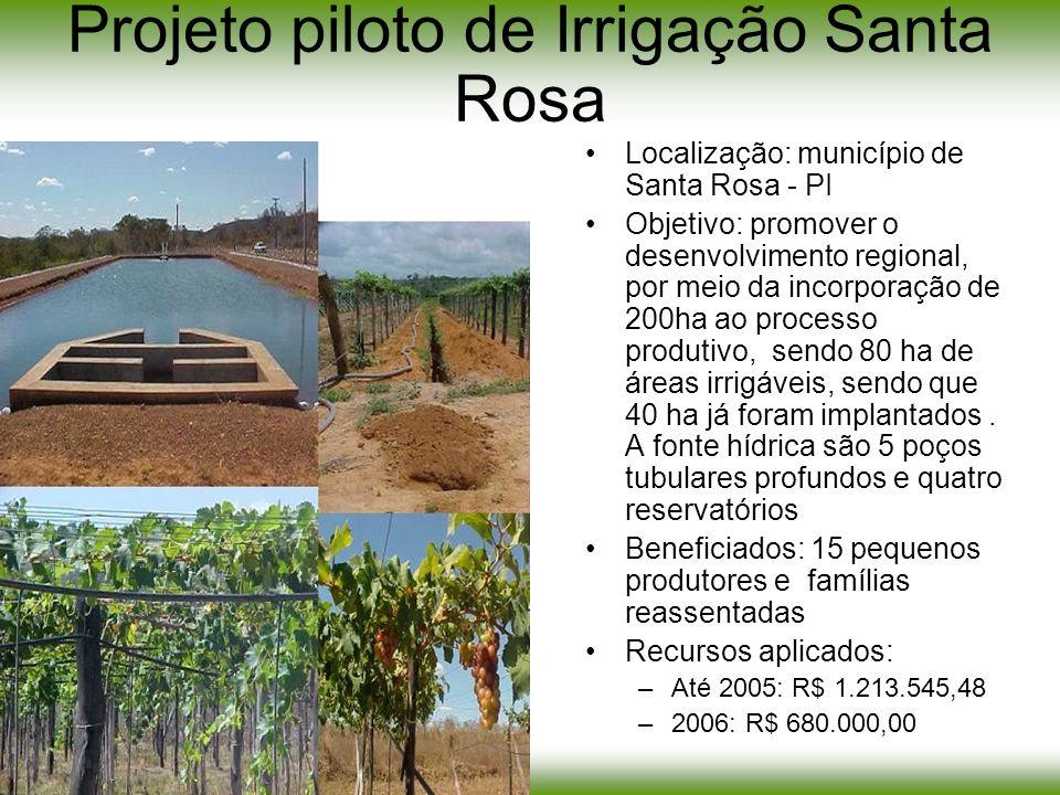 Projeto piloto de Irrigação Santa Rosa Localização: município de Santa Rosa - PI Objetivo: promover o desenvolvimento regional, por meio da incorporaç
