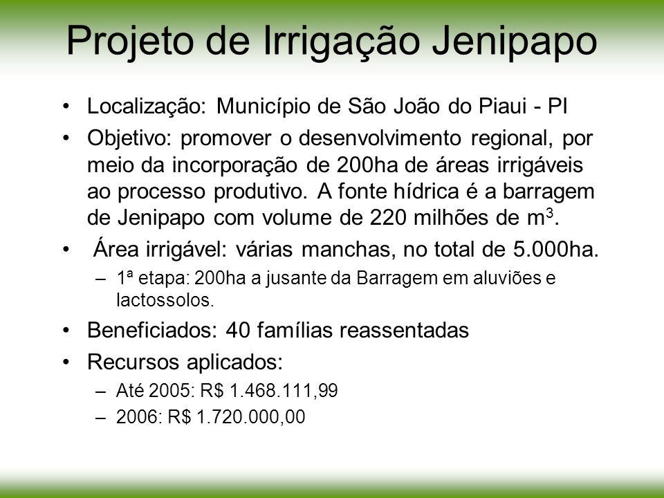 Projeto de Irrigação Jenipapo Localização: Município de São João do Piaui - PI Objetivo: promover o desenvolvimento regional, por meio da incorporação