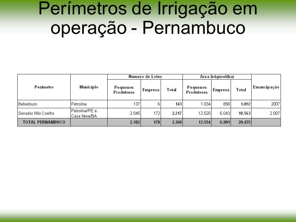 Objetivo: recuperação e melhoramento da infra- estrutura de irrigação de uso comum, visando à emancipação dos perímetros Recursos: oriundos do PPI – Projetos Pilotos de Investimento (RP-3 – Resultado primário do Tesouro) –2005: R$ 40.636.019,00 –2006: R$ 35.120.970,00 Perímetros beneficiados: –MG: Pirapora, Lagoa Grande, Gorutuba e Jaíba –BA: Curaçá, Barreiras Norte, Formoso, Nupeba/Riacho Grande, Maniçoba, Mandacaru, Mirorós e Tourão –PE: Bebedouro e Nilo Coelho