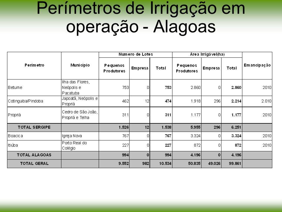 Objetivo: Implantação de infra-estruturas hidráulica para irrigar 7.862 ha divididos em lotes para pequenos produtores, empresas.