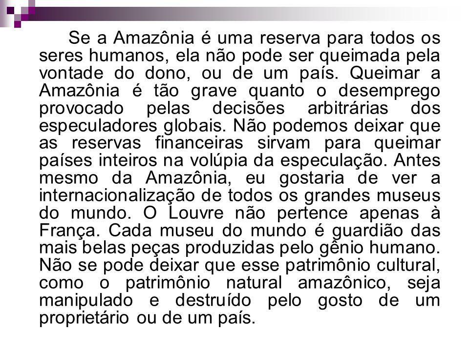 Se a Amazônia é uma reserva para todos os seres humanos, ela não pode ser queimada pela vontade do dono, ou de um país. Queimar a Amazônia é tão grave