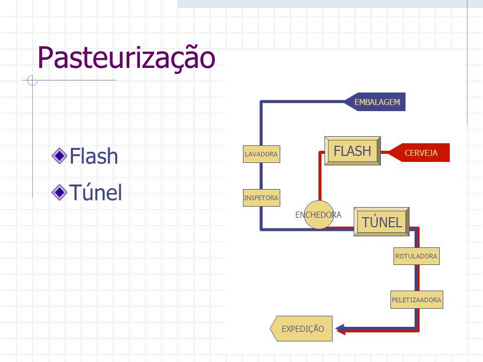 Pasteurização Túnel ENCHEDORA INSPETORA LAVADORA ROTULADORA PELETIZAADORA EMBALAGEM CERVEJA EXPEDIÇÃO TÚNEL FLASH Flash