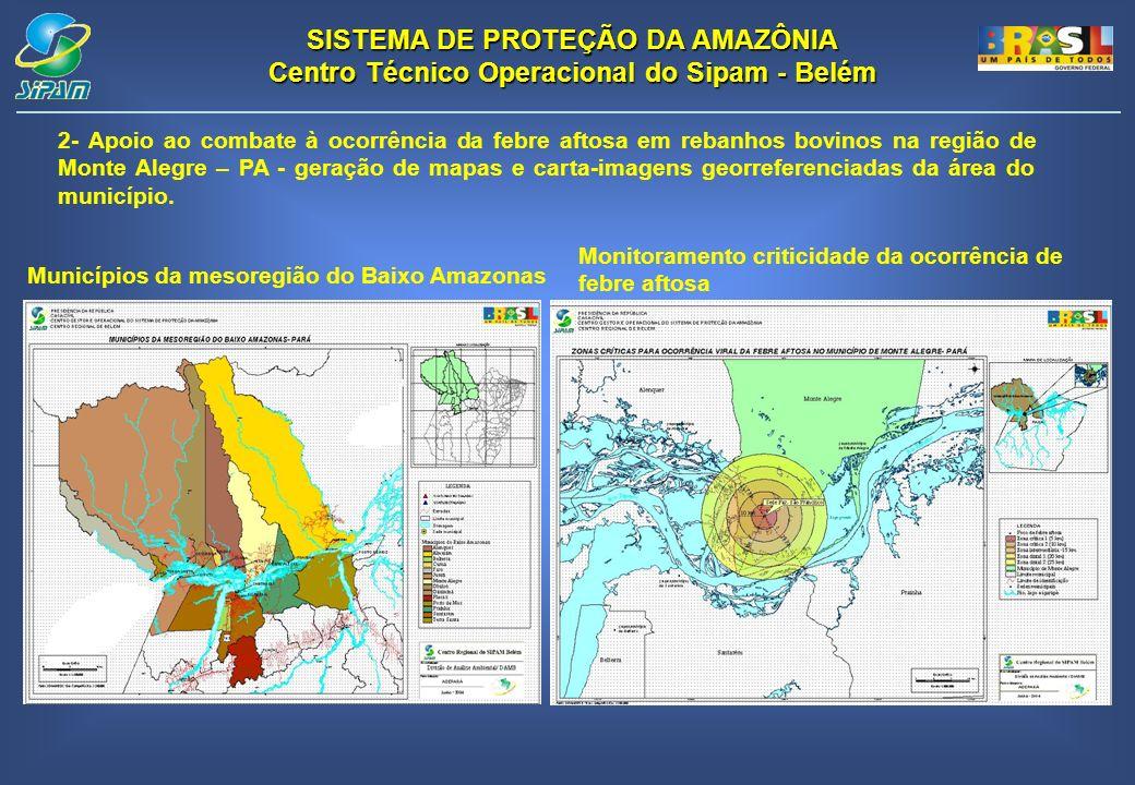 SISTEMA DE PROTEÇÃO DA AMAZÔNIA Centro Técnico Operacional do Sipam - Belém 2- Apoio ao combate à ocorrência da febre aftosa em rebanhos bovinos na re