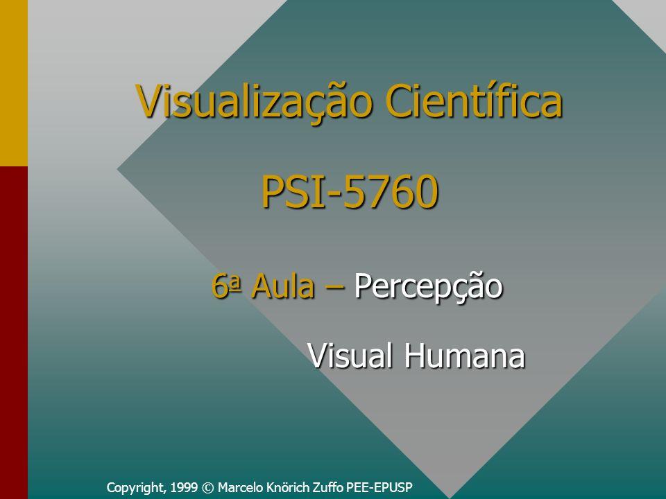 Ementa da Aula Sistema Visual HumanoSistema Visual Humano Percepção HumanaPercepção Humana Modelos de CoresModelos de Cores –RGB –CMY –HSV –HSL