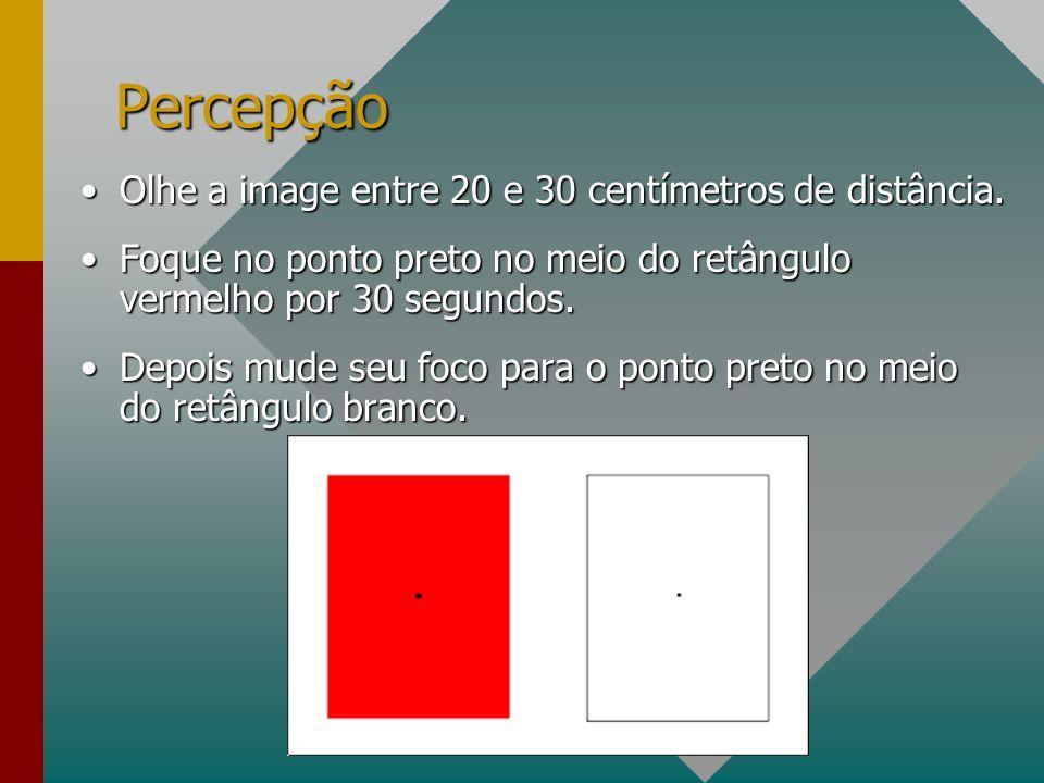 Percepção Olhe a image entre 20 e 30 centímetros de distância.Olhe a image entre 20 e 30 centímetros de distância.