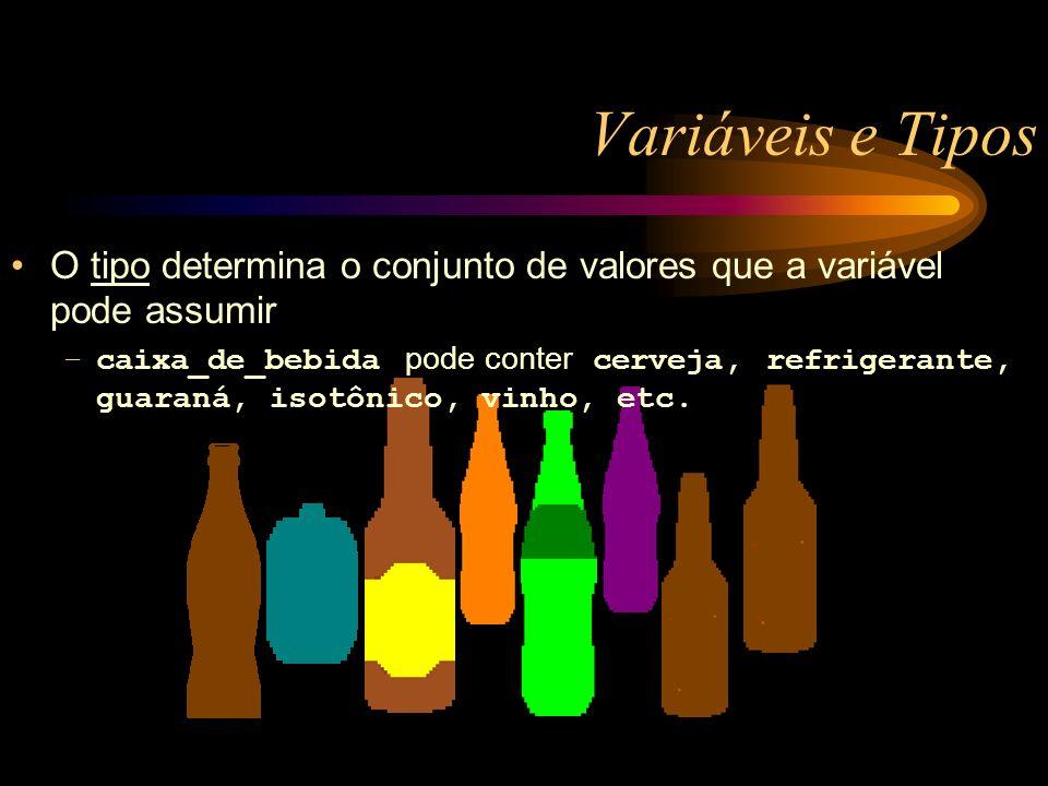 Variáveis e Tipos O tipo determina o conjunto de valores que a variável pode assumir –caixa_de_bebida pode conter cerveja, refrigerante, guaraná, isotônico, vinho, etc.