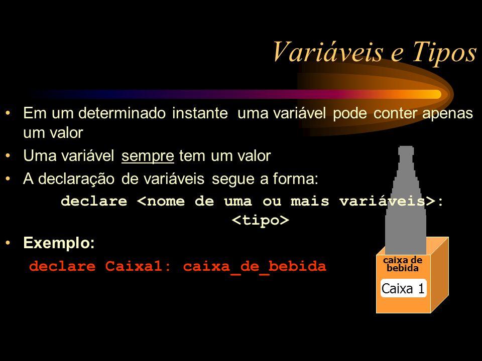 Variáveis e Tipos caixa de bebida Caixa 1 Em um determinado instante uma variável pode conter apenas um valor Uma variável sempre tem um valor A declaração de variáveis segue a forma: declare : Exemplo: declare Caixa1: caixa_de_bebida