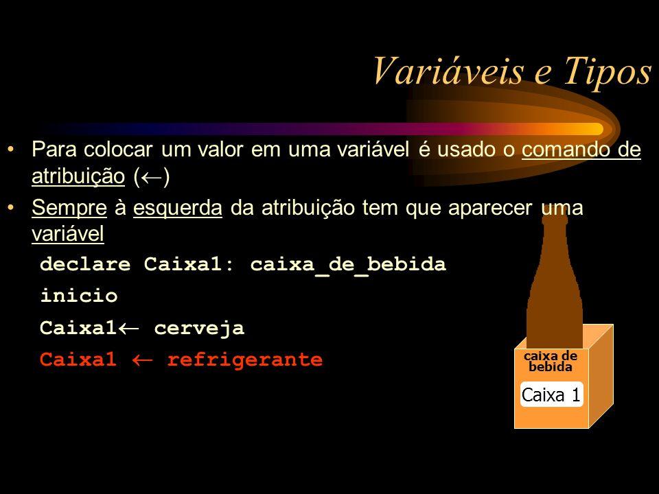 Variáveis e Tipos caixa de bebida caixa de bebida Caixa 1 Para colocar um valor em uma variável é usado o comando de atribuição ( ) Sempre à esquerda da atribuição tem que aparecer uma variável declare Caixa1: caixa_de_bebida inicio Caixa1 cerveja Caixa1 refrigerante