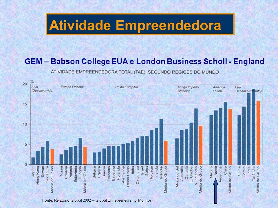 GEM – Babson College EUA e London Business Scholl - England Fonte: Relatório Global 2002 – Global Entrepreneurship Monitor Atividade Empreendedora