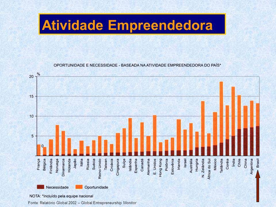 Fonte: Relatório Global 2002 – Global Entrepreneurship Monitor Atividade Empreendedora
