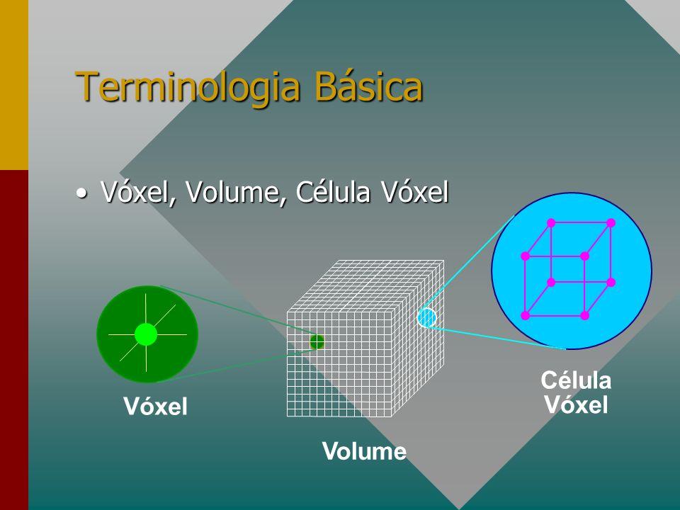 Terminologia Básica Vóxel (Elemento de Volume): amostra de uma posição no espaço.Vóxel (Elemento de Volume): amostra de uma posição no espaço.