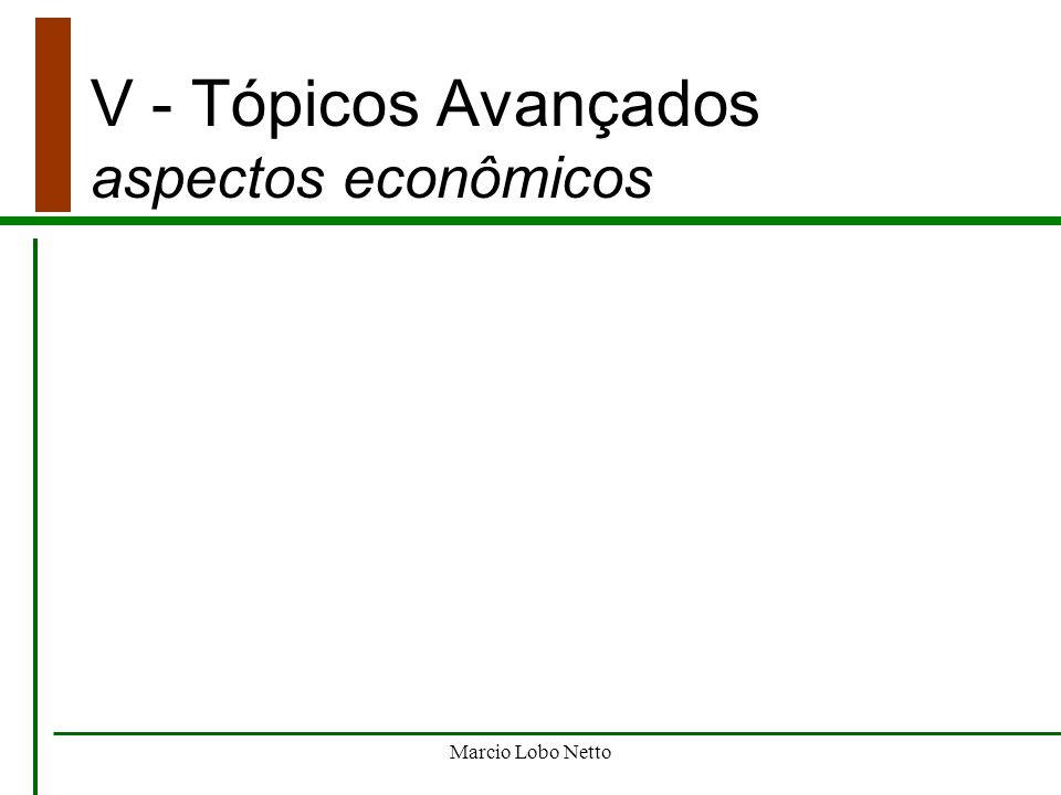 Marcio Lobo Netto V - Tópicos Avançados aspectos econômicos