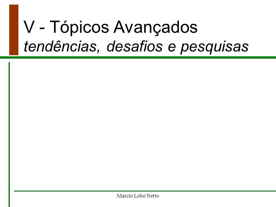 Marcio Lobo Netto V - Tópicos Avançados tendências, desafios e pesquisas