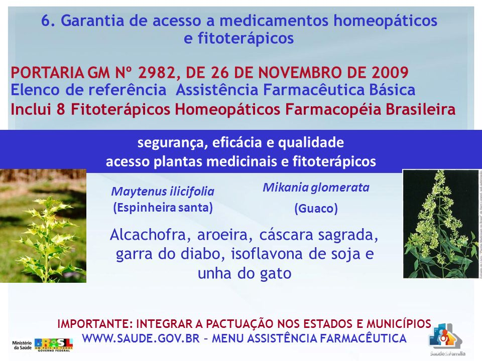 segurança, eficácia e qualidade acesso plantas medicinais e fitoterápicos Maytenus ilicifolia (Espinheira santa) Mikania glomerata (Guaco) 6. Garantia
