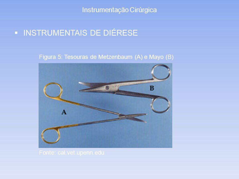 Instrumentação Cirúrgica INSTRUMENTAIS DE DIÉRESE Figura 5: Tesouras de Metzenbaum (A) e Mayo (B) Fonte: cal.vet.upenn.edu
