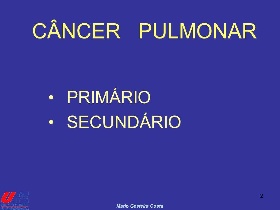 3 CÂNCER PULMONAR PRIMÁRIO U.S.A.
