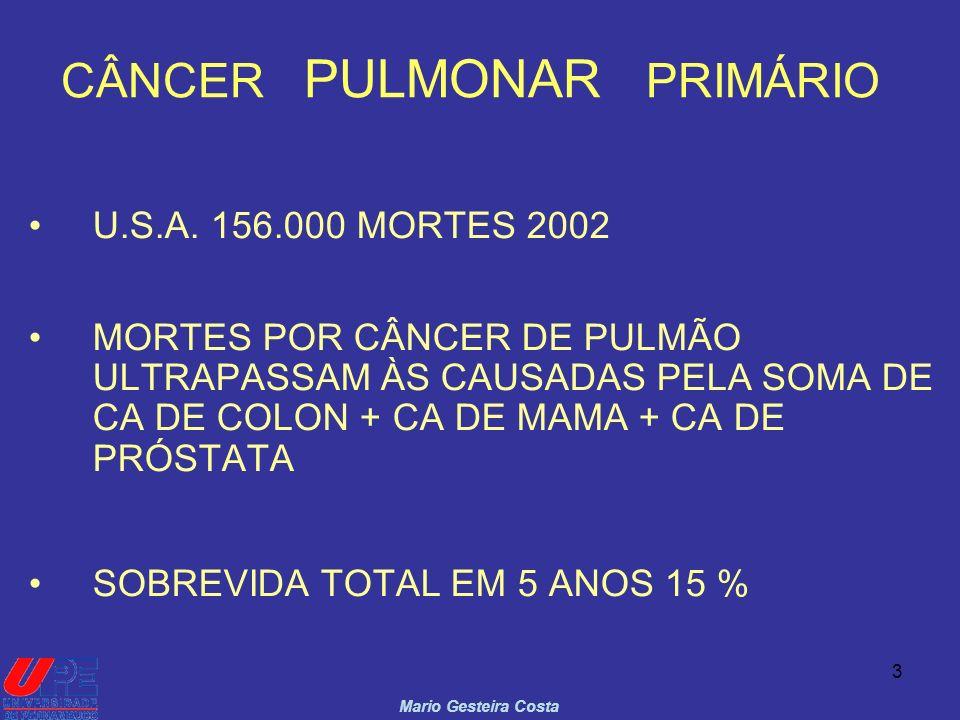 3 CÂNCER PULMONAR PRIMÁRIO U.S.A. 156.000 MORTES 2002 MORTES POR CÂNCER DE PULMÃO ULTRAPASSAM ÀS CAUSADAS PELA SOMA DE CA DE COLON + CA DE MAMA + CA D