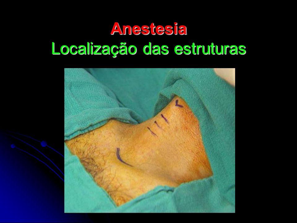 Anestesia Localização das estruturas