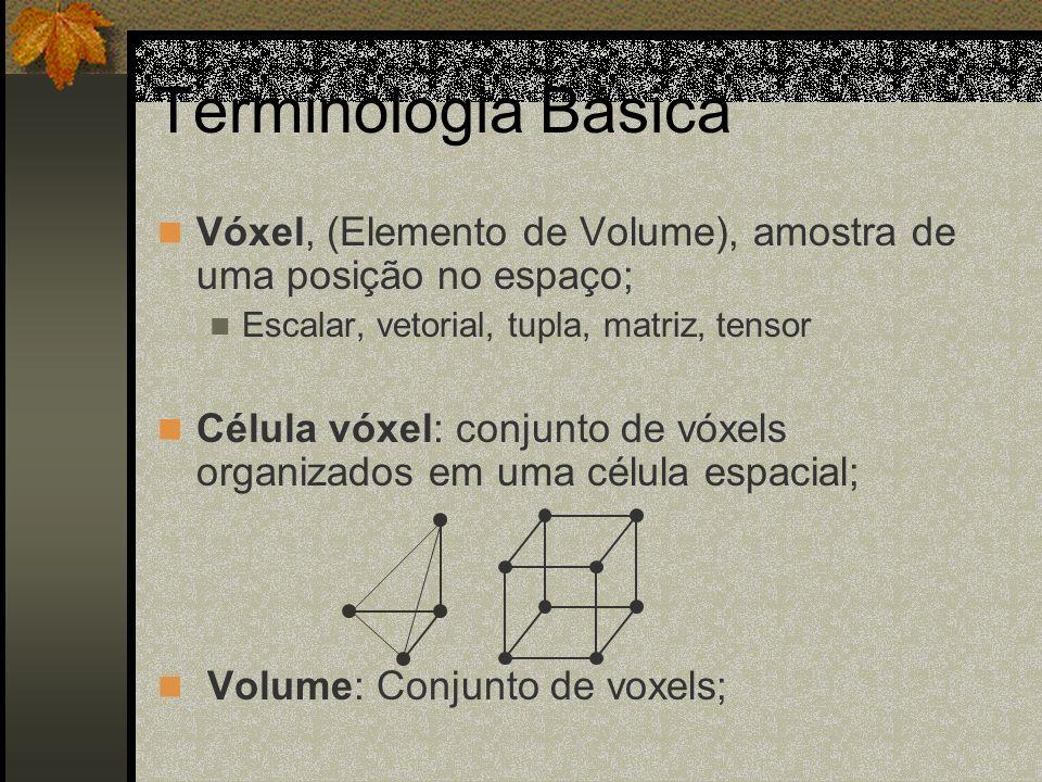 Terminologia Básica Vóxel, (Elemento de Volume), amostra de uma posição no espaço; Escalar, vetorial, tupla, matriz, tensor Célula vóxel: conjunto de