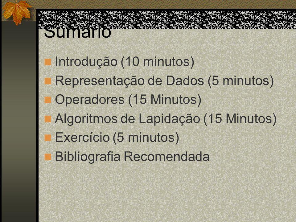 Sumário Introdução (10 minutos) Representação de Dados (5 minutos) Operadores (15 Minutos) Algoritmos de Lapidação (15 Minutos) Exercício (5 minutos)