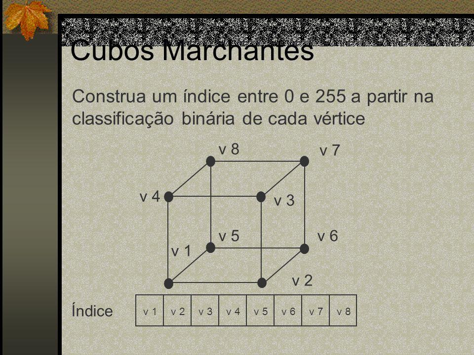 v 1 v 7 v 8 v 3 v 4 v 6v 5 v 2 v 1v 2v 3v 4v 5v 6v 7v 8 Índice Construa um índice entre 0 e 255 a partir na classificação binária de cada vértice Cubo