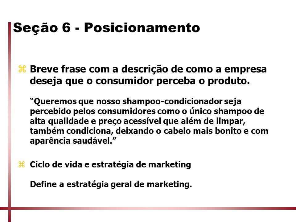 Seção 6 - Posicionamento zBreve frase com a descrição de como a empresa deseja que o consumidor perceba o produto. Queremos que nosso shampoo-condicio
