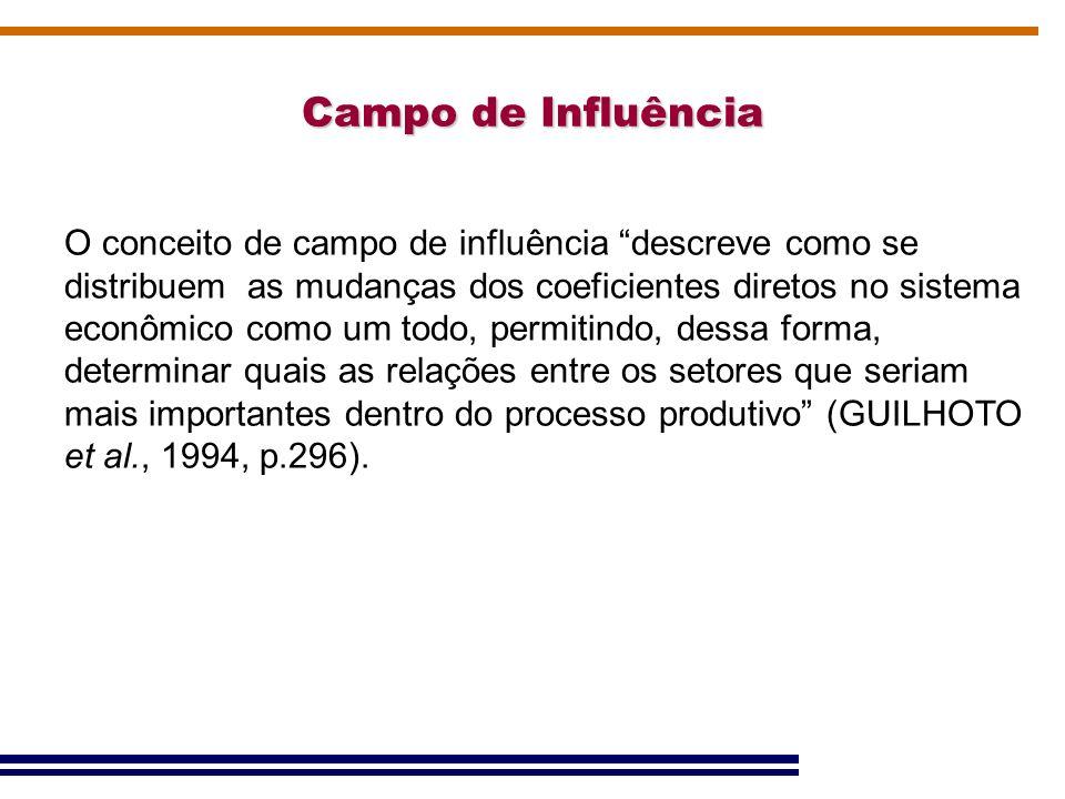Campo de Influência O conceito de campo de influência descreve como se distribuem as mudanças dos coeficientes diretos no sistema econômico como um to