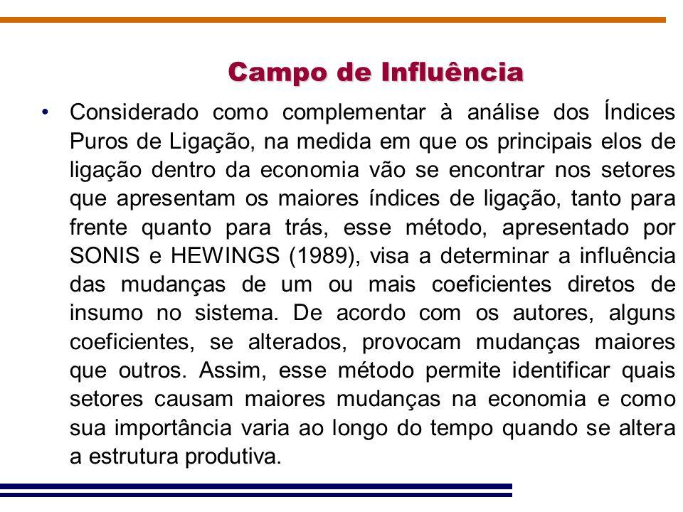Campo de Influência Considerado como complementar à análise dos Índices Puros de Ligação, na medida em que os principais elos de ligação dentro da eco