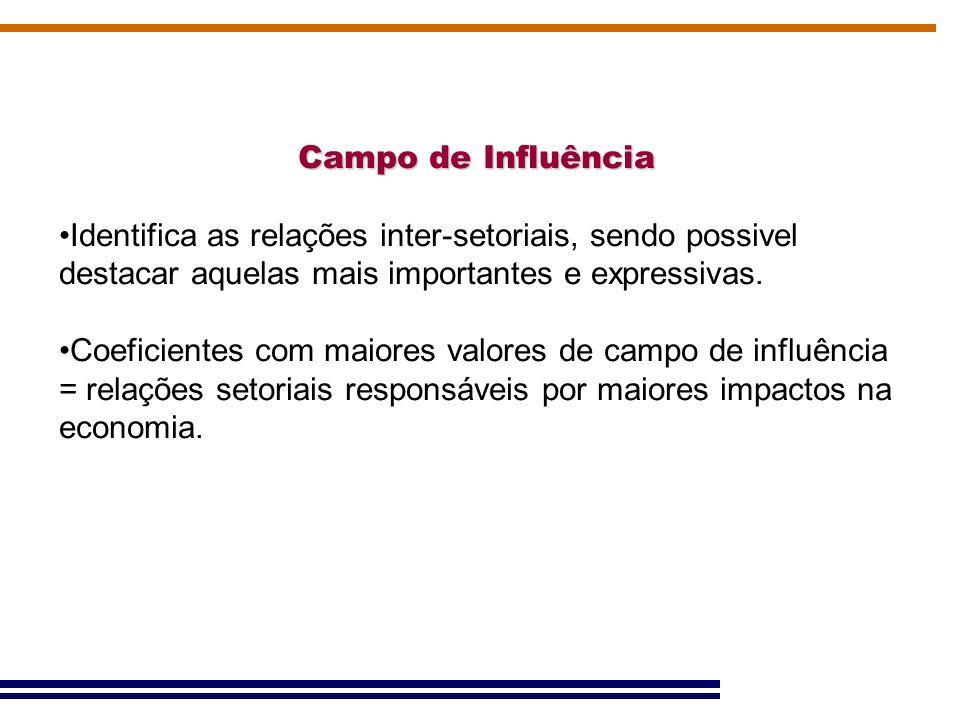 Campo de Influência Identifica as relações inter-setoriais, sendo possivel destacar aquelas mais importantes e expressivas. Coeficientes com maiores v