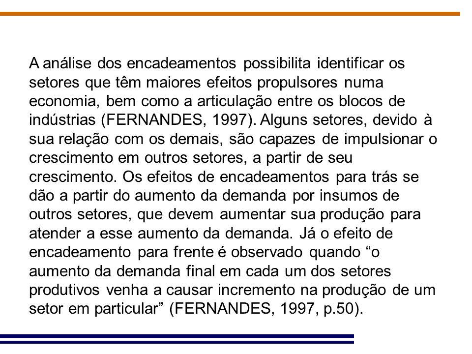 Conclusões Papel importante que os derivados do petróleo e álcool passaram a ter como setores-chave na economia mineira, considerando que o setor, que em 1996 não figura em nenhum índice como setor-chave, aparece tanto nos Índices de Rasmussen-Hirschmann quanto no Campo de Influência para 2005.