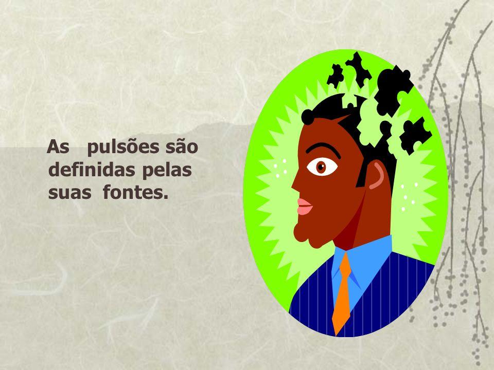 As pulsões são definidas pelas suas fontes.