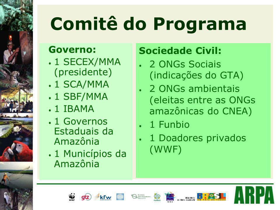 Comitê do Programa Governo: 1 SECEX/MMA (presidente) 1 SCA/MMA 1 SBF/MMA 1 IBAMA 1 Governos Estaduais da Amazônia 1 Municípios da Amazônia Sociedade Civil: 2 ONGs Sociais (indicações do GTA) 2 ONGs ambientais (eleitas entre as ONGs amazônicas do CNEA) 1 Funbio 1 Doadores privados (WWF)