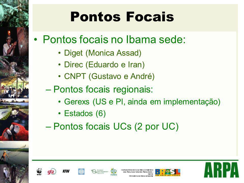 Pontos Focais Pontos focais no Ibama sede: Diget (Monica Assad) Direc (Eduardo e Iran) CNPT (Gustavo e André) –Pontos focais regionais: Gerexs (US e P