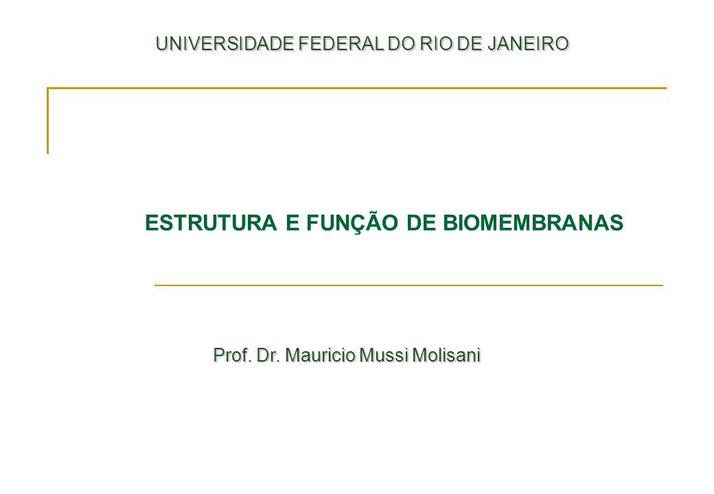 ESTRUTURA E FUNÇÃO DE BIOMEMBRANAS UNIVERSIDADE FEDERAL DO RIO DE JANEIRO UNIVERSIDADE FEDERAL DO RIO DE JANEIRO Prof. Dr. Mauricio Mussi Molisani