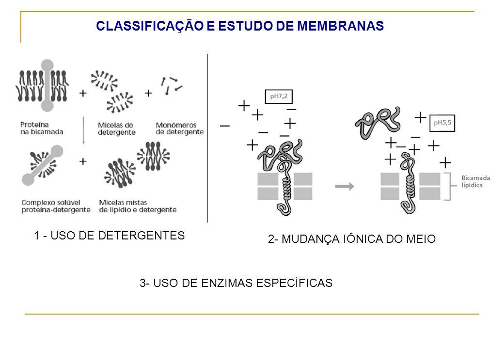 3- USO DE ENZIMAS ESPECÍFICAS 1 - USO DE DETERGENTES 2- MUDANÇA IÔNICA DO MEIO CLASSIFICAÇÃO E ESTUDO DE MEMBRANAS