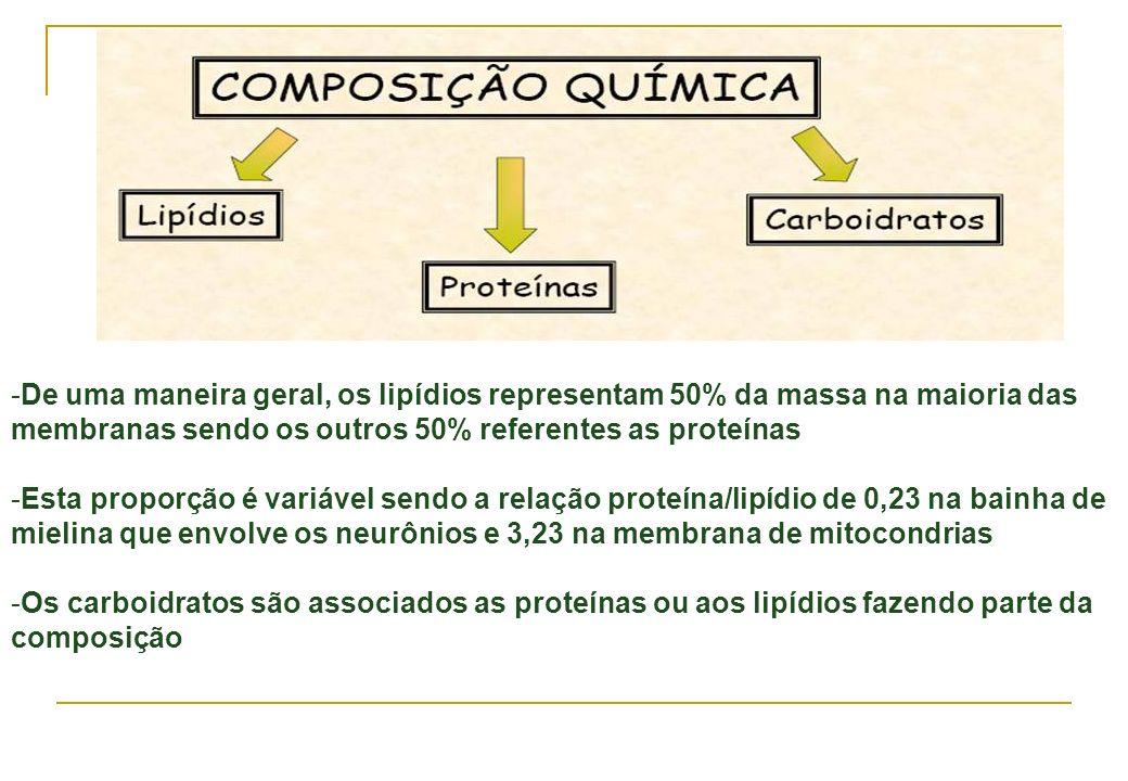 -De uma maneira geral, os lipídios representam 50% da massa na maioria das membranas sendo os outros 50% referentes as proteínas -Esta proporção é var