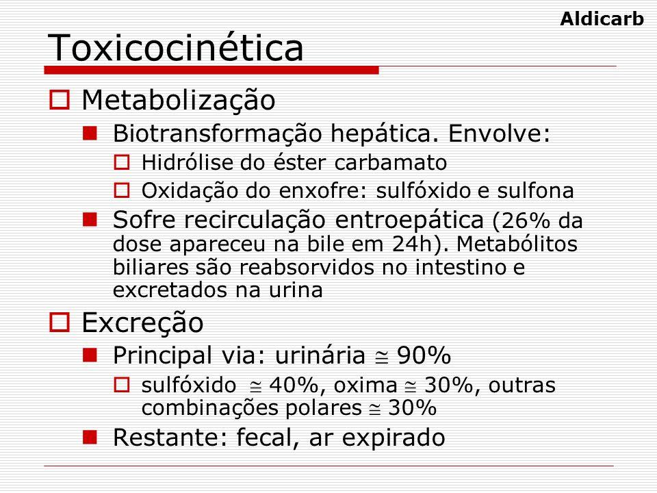Toxicocinética Metabolização Biotransformação hepática. Envolve: Hidrólise do éster carbamato Oxidação do enxofre: sulfóxido e sulfona Sofre recircula