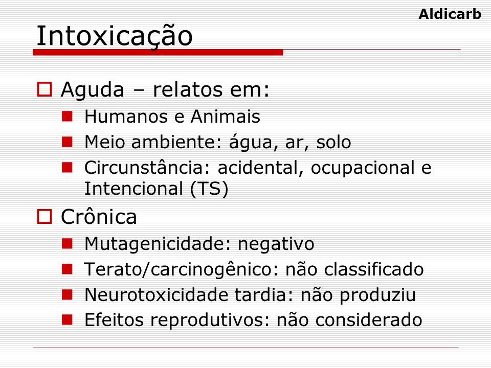 Intoxicação Aguda – relatos em: Humanos e Animais Meio ambiente: água, ar, solo Circunstância: acidental, ocupacional e Intencional (TS) Crônica Mutag