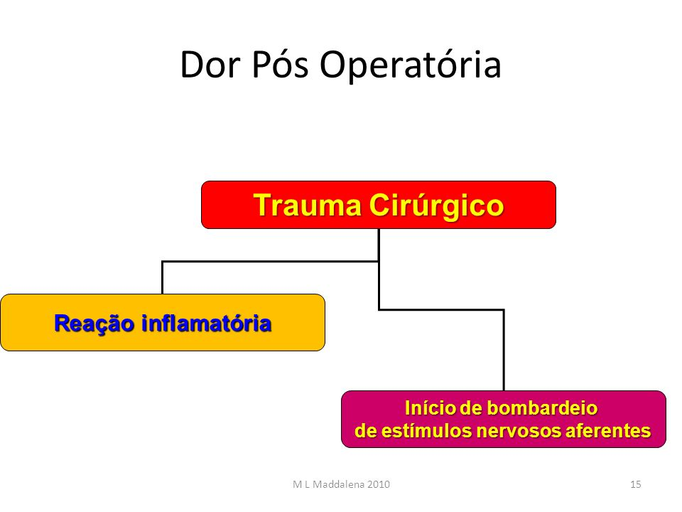 Dor Pós Operatória Trauma Cirúrgico Reação inflamatória Início de bombardeio de estímulos nervosos aferentes 15M L Maddalena 2010